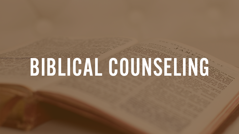 The Basics of Biblical Counseling – Session 2
